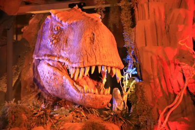 Voyage to the Center of the Earth, Dinosaur, Water Ride, Water World